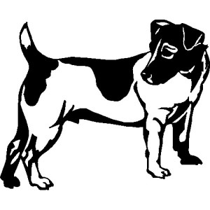 Decal - Jack Russell Terrier
