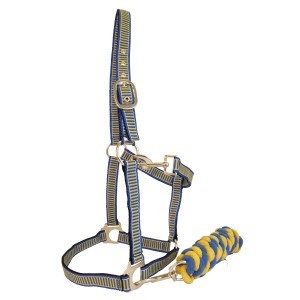 Rancher Halter & Lead Set Blue/Yellow