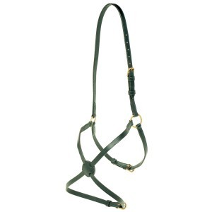 Jeremy & Lord Grackle Noseband