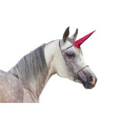 Clip-On Unicorn Rainbow (Clips to Browband)