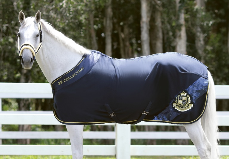 Horse Supplies And Horse Riding Equipment Horse Gear Outlet