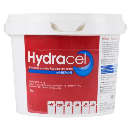 Hydracel Electrolyte Replacer 2KG